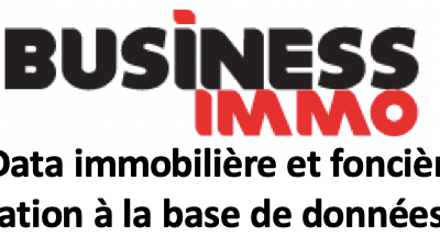 Formation Business Immo à DVF